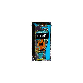 DREN JARABE 250 ML